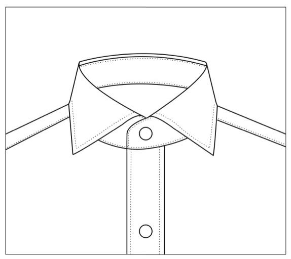 cutaway copy